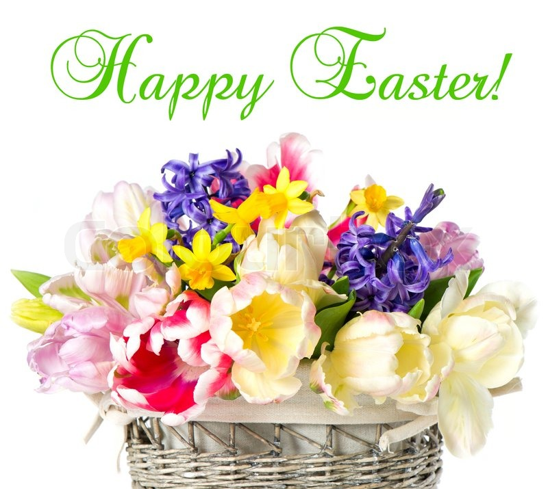 3367231 Happy Easter Tulips Narcissus And Hyacinth Colorful Spring